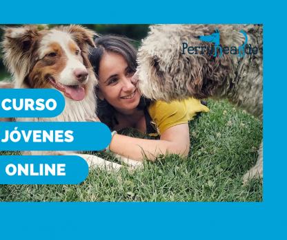 Curso de educación canina para perros jóvenes - proporcional
